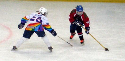 Депутаты облдумы поддерживают юных смоленских хоккеистов