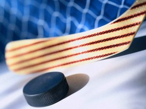 Смоленская область — в числе регионов, вошедших любительскую хоккейную лигу под патронажем В.Путина