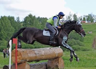 В Смоленске прошел чемпионат области по конному троеборью