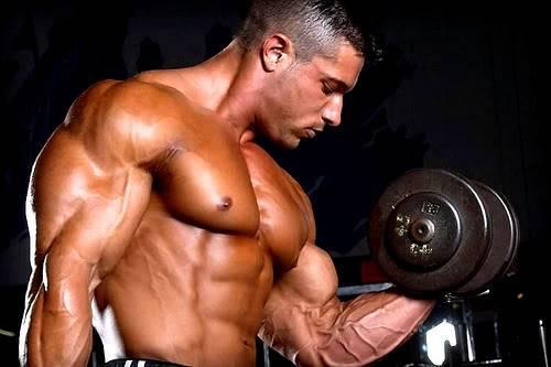 Креатин в помощь мышцам