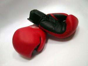 В Лопатинском саду сойдутся российские и белорусские боксеры