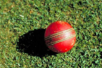 В ЮАР игрок в крикет умер после попадания мяча в голову