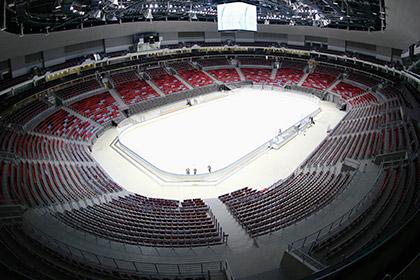 Хоккейные сборные назовут составы за месяц до Олимпиады в Сочи