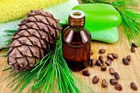 Кедровое эфирное масло для красоты и здоровья