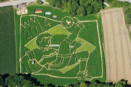 Фермеры вырастили лабиринт в честь победы сборной Германии на ЧМ-2014
