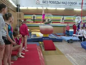 В Смоленске прошло открытое первенство по спортивной гимнастике