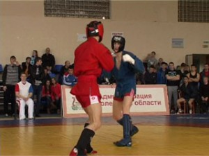 В Смоленске впервые прошел чемпионат по боевому самбо