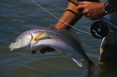 Рыбалка на Украине