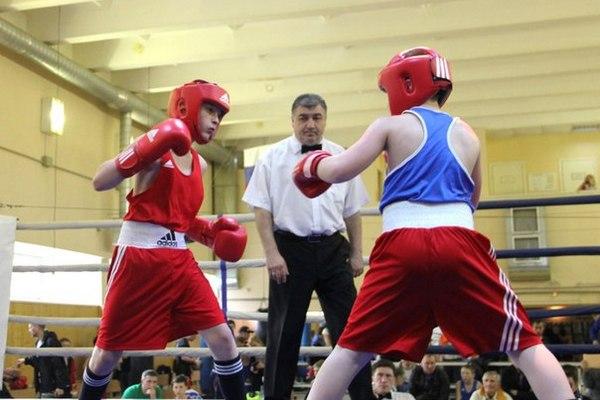 Юные смоленские боксёры стали победителями турнира в Санкт-Петербурге