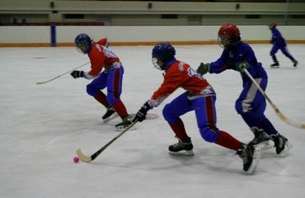 С 21 по 23 августа на ледовой арене СОГАУ «Дворец спорта «Юбилейный» будет проходить Хоккейный турнир среди юношей