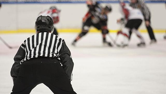 В Чехии хоккейный арбитр умер после удара шайбой в голову