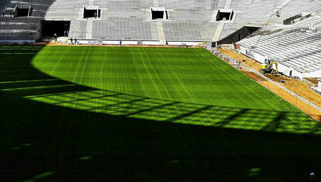 На стадионе «Лужники» завершены работы по созданию натурального газона