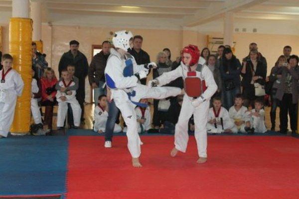 Смоляне завоевали награды Первенства Белгородской области по тхэквондо