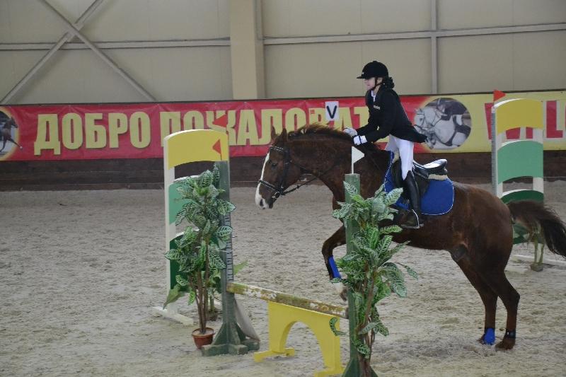 В Смоленске прошёл Кубок города по конкуру