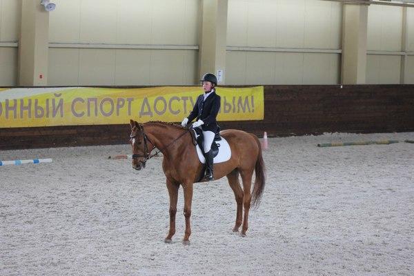 В Смоленске конники померяются силами в двоеборье