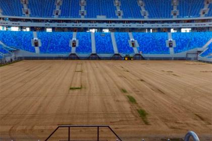 Названа стоимость работ по замене газона на «Крестовском»