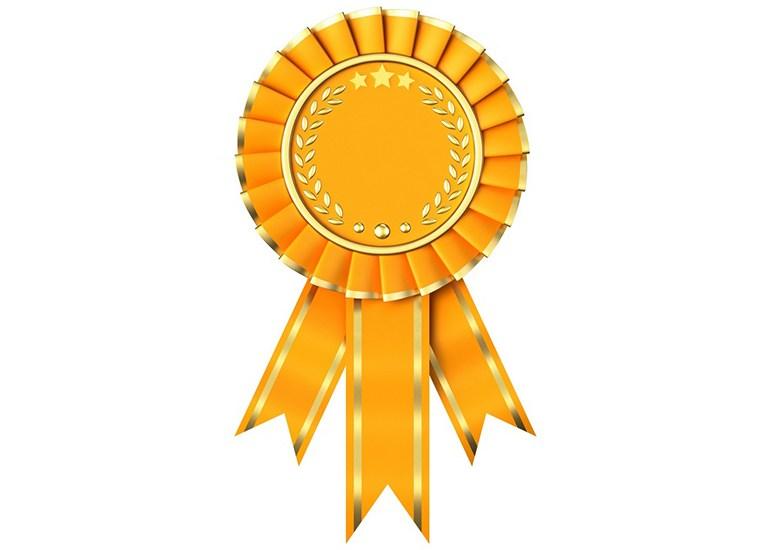 Смоляне взяли «бронзу» в турнире среди городов-героев