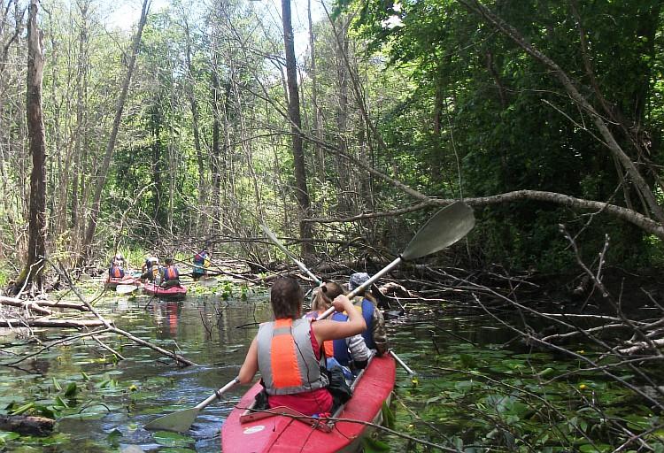 Детский туризм: озеро Баклановское, речки Брус, Половья и не только
