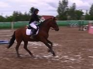 Смоленские конники стали призерами крупных соревнований