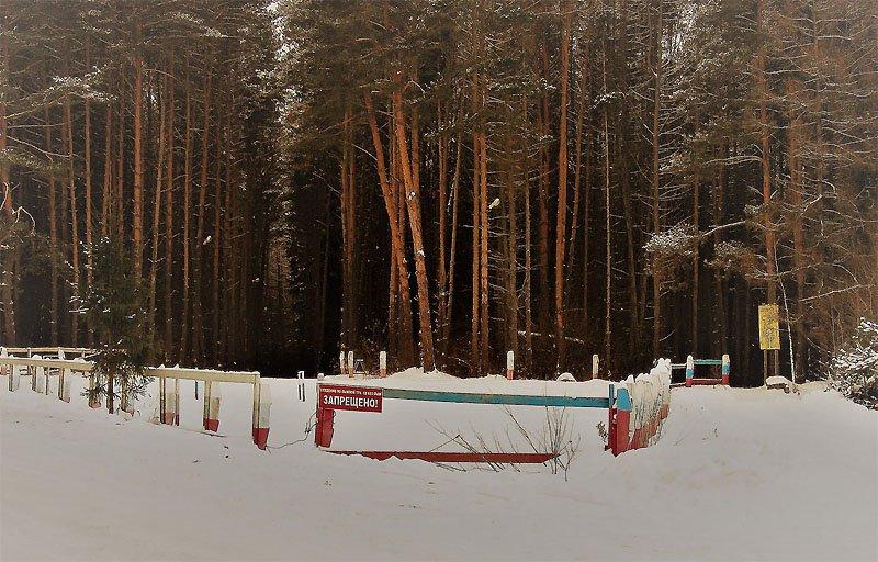 К выборам — Вязьме лыжную базу!