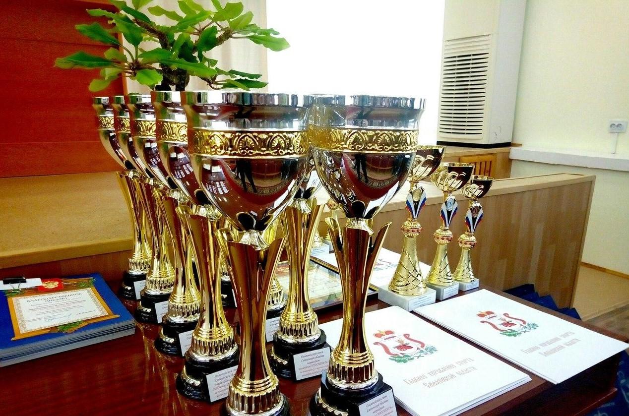 В Смоленске подвели итоги спортивного сезона 2017 года