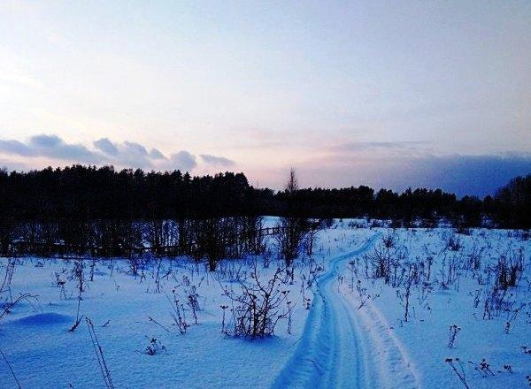В заповеднике под Смоленском проложили лыжню