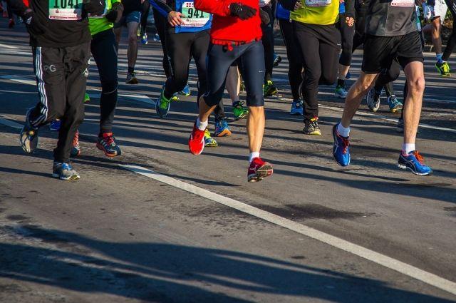 Участники 720-километрового ультрамарафона пробегут через Смоленск