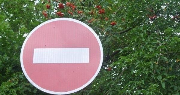 В Смоленске из-за велопарада 22 сентября ограничат движение на восьми улицах