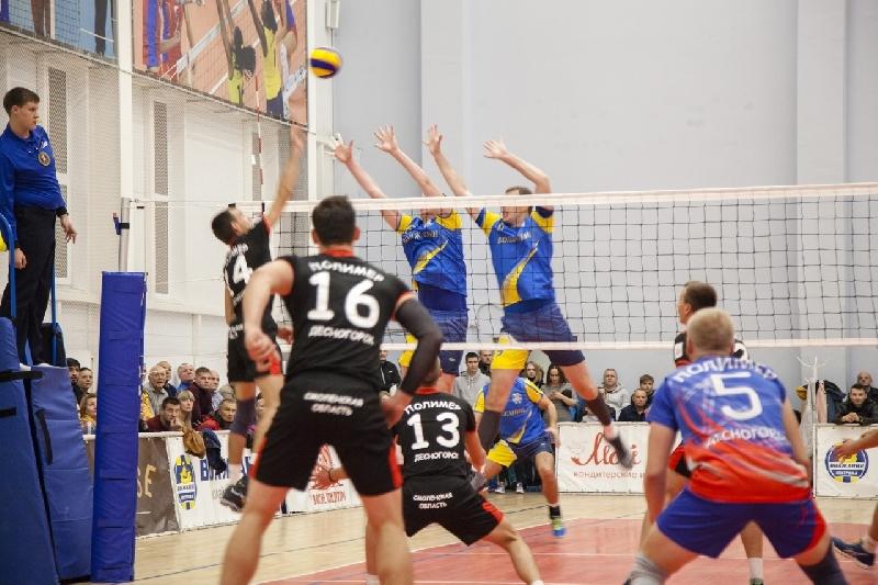 Смоленские волейболисты вышли на второе место в чемпионате России