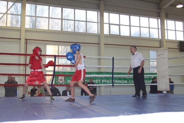 В открытом чемпионате Смоленской области по боксу приняли участие более 130 спортсменов