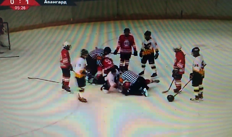 В Смоленской области хоккеисты устроили драку и попали на видео