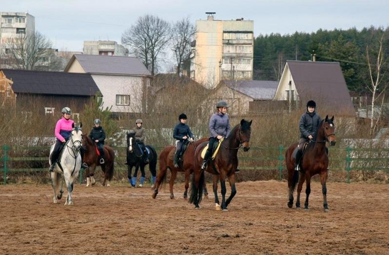 В Дорогобуже спасли секцию конного спорта