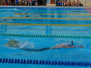 Российские пловцы соревновались в Смоленске