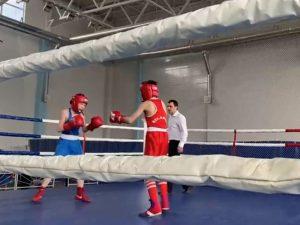 В смоленском райцентре прошел межрегиональный турнир по боксу
