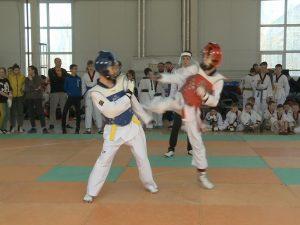 Более 200 юных смоленских спортсменов приняли участие в соревнованиях по тхэквондо