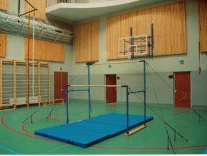 Три спортивных школы Смоленска приобрели новое оборудование
