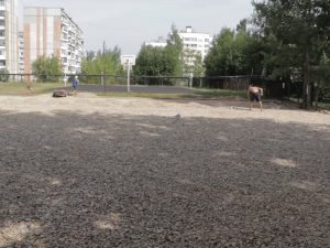 В смоленской школе № 40 появится многофункциональная спортплощадка